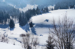 Snowy Valley In The Czech Republic Royalty Free Stock Image