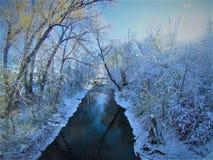 The creek Royalty Free Stock Photo