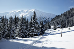 Snowy view in Tatra Mountains Stock Photo