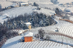 Snowy vineyards in Piedmont, Italy. Stock Photography
