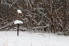 Snowy-Vogelhaus in einem Schnee-Sturm Stockbilder