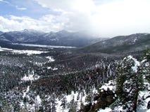 Snowy-Wald Lizenzfreies Stockfoto