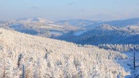 Snowy-Wald no.12 Lizenzfreie Stockfotos