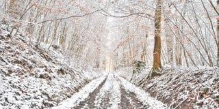 Snowy-Waldweg Stockbild