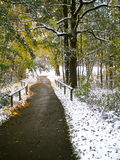Snowy Walkway Stock Images