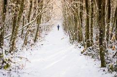Snowy-Wanderung im goldenen Licht durch eine bewaldete Spur Lizenzfreie Stockfotografie