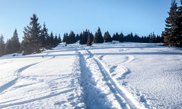 Snowy-Wanderweg mit Bäumen und klarer Himmel in Mala Fatra-Bergen in Slowakei Lizenzfreie Stockfotos
