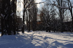 Snowy way in Abovyan city in winter Royalty Free Stock Photography