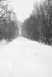 Snowy way Royalty Free Stock Images