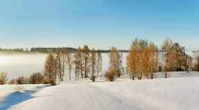 Snowy way to the river. Stock Images