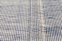 Snowy weather. It dropped a lot of snow. Background and texture of snow. Stock Photos