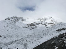 Snowy weather on way to Thorong La Pass, Nepal Royalty Free Stock Photos