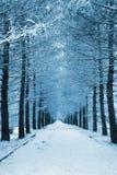 Snowy-Weg Lizenzfreies Stockfoto