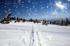 Snowy-Weg auf dem Hügel Stockbild