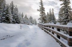 Snowy-Weg gezeichnet mit einem Bretterzaun Stockfotografie