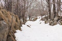 Snowy-Weg im Berg mit Felsen Lizenzfreie Stockfotos