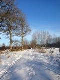 Snowy-Weg mit Bahnen unter einem blauen Himmel stockfoto