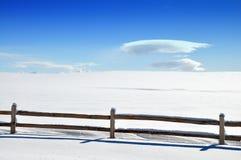 Snowy-Weiß Stockbild