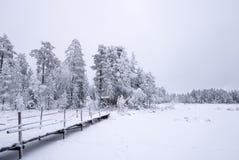 Snowy-Weißwinterbrücke Lizenzfreies Stockfoto