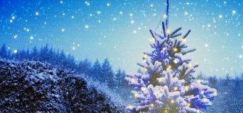 Snowy-Weihnachtsbaum mit Lichtern Lizenzfreie Stockfotos
