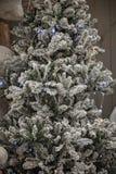 Snowy-Weihnachtsbaum mit Schnee Lizenzfreies Stockbild