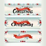 Snowy-Weihnachtsfahnen Stockfotografie