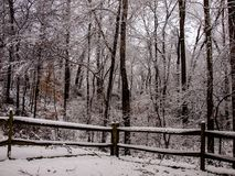 Snowy white day in Mayberry. A beautiful snowy day in Mount Airy, North Carolina fun for all Stock Photos