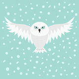 Snowy white owl. Flying bird with big wings. Blue eyes. Arctic Polar animal collection. Baby education. Flat design. Isolated. Sky Royalty Free Stock Photo