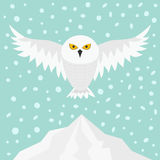 Snowy white owl. Flying bird with big wings. Yellow eyes. Arctic Polar animal collection.  Stock Photography