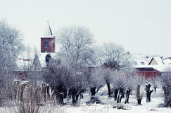 Snowy willow tree forest in front of Guelpe Village. Stock Photo