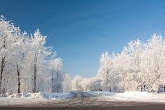 Snowy-Winter Lizenzfreie Stockbilder