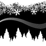 Snowy winter background with pine trees. Winter snow background with snowy pine trees and snowflakes in black and white. Also available as Vector Illustration