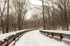 Snowy Winter Boardwalk Royalty Free Stock Image
