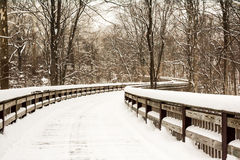 Snowy Winter Boardwalk Stock Image