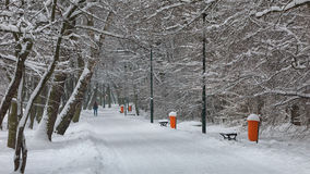 SNOWY WINTER IN CITY PARK Royalty Free Stock Photo