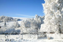 Snowy, winter country Royalty Free Stock Image