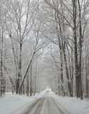 Snowy winter covered lane. Michigan February snow Stock Photos
