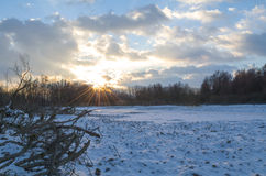 Snowy Winter Danube Backwater Landscape at Sunset Royalty Free Stock Photo