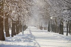 Snowy winter day background stock photography