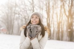 Snowy winter day royalty free stock photography