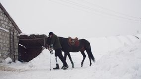 Snowy winter, disabled man jockey leads, holding with reins a black horse on the way. man has a prosthesis instead of