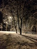 Snowy winter. fabulous mood. Snow. stock images