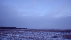 Snowy winter field on a background of blue sky,the moon high in the sky, winter forest night, grass swaying the wind, stock footage