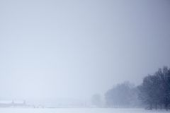 Snowy winter field Royalty Free Stock Image