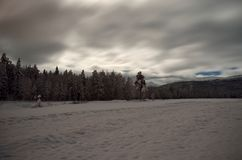 Snowy winter field and forest Royalty Free Stock Photos