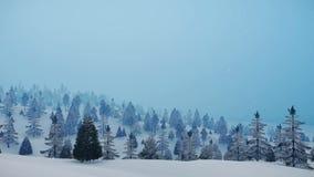 Snowy winter fir forest at slight snowfall 4K stock video footage