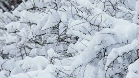 Snowy winter stock footage