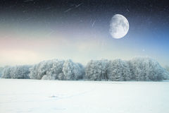 Snowy winter forest fairy Royalty Free Stock Images