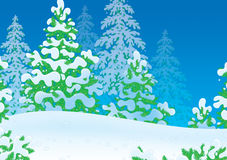 Snowy winter forest Royalty Free Stock Images