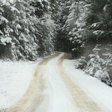 Snowy winter forest road Royalty Free Stock Photography